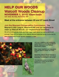 wwood-cleanup-2015-flyer-thumb