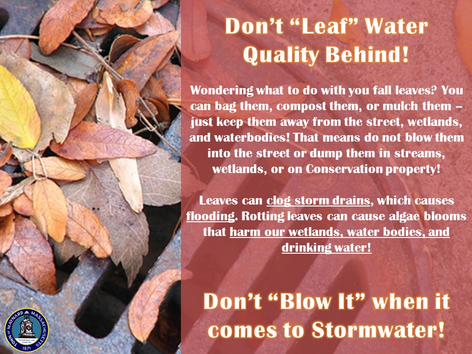"Wondering what to do with you fall leaves? You can bag them, compost them, or mulch them – just keep them away from the street, wetlands, and waterbodies! That means do not blow them into the street or dump them in streams, wetlands, or on Conservation property!  Leaves can clog storm drains, which causes flooding. Rotting leaves can cause algae blooms that harm our wetlands, water bodies, and drinking water!  Don't ""Blow It"" when it comes to Stormwater!"""